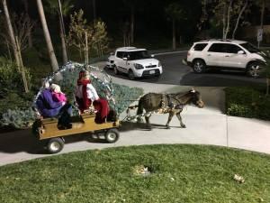 Pony Wagon Ride
