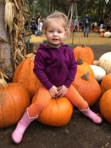 Pumpkin Picking
